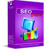 English SEO Services